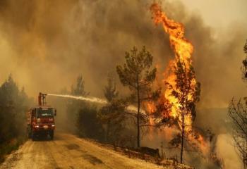 ESTP'den yangın bölgesine yardım kampanyası